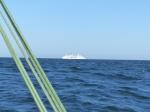 """Das """"Traumschiff"""" verlässt gerade Helsinki."""