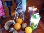 Früchte, Fruchtsaft, Joghurt und ein Pürierstab sind die Grundzutaten.