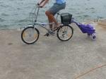 Neuester Shoppingtrend. Rosa Hackenporsche mit Rentnerbike.