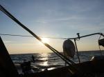 Langsam fischt der Wind auf.